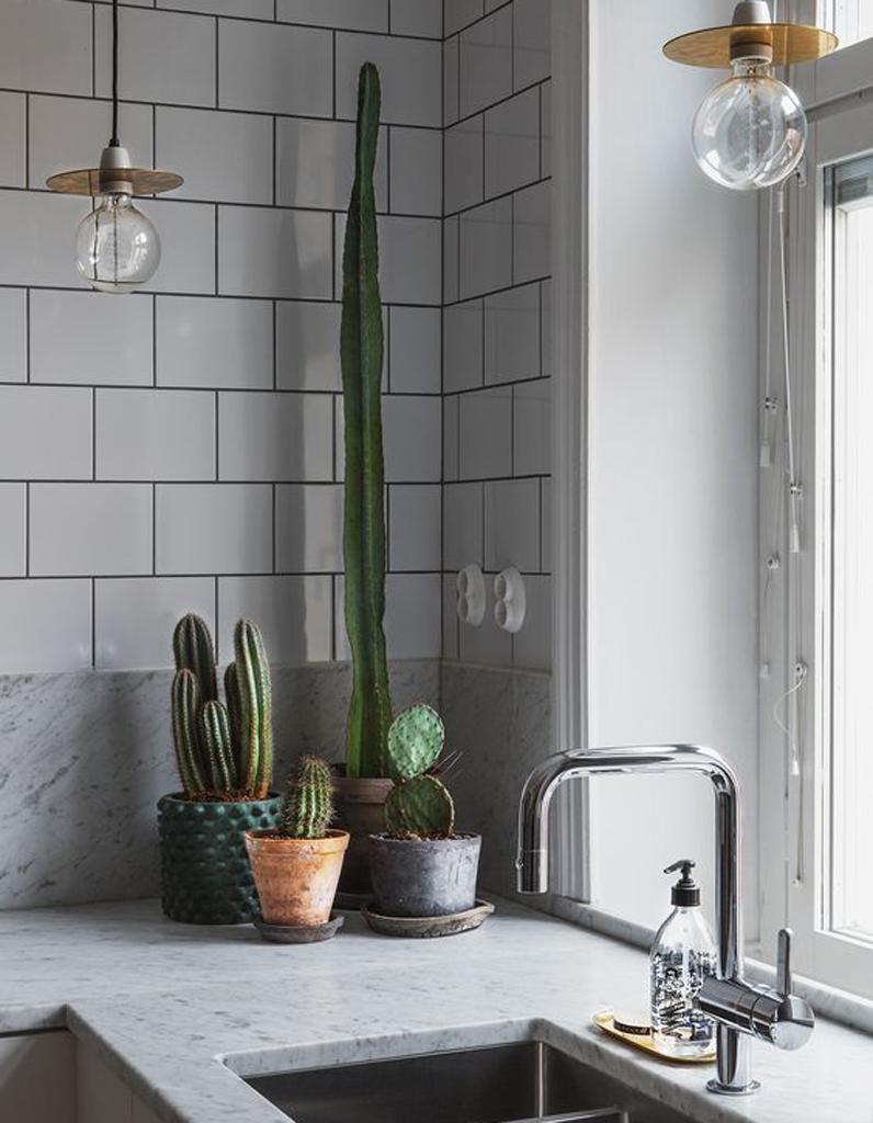 30 int rieurs pour vous convaincre d 39 adopter d finitivement le cactus elle d coration. Black Bedroom Furniture Sets. Home Design Ideas