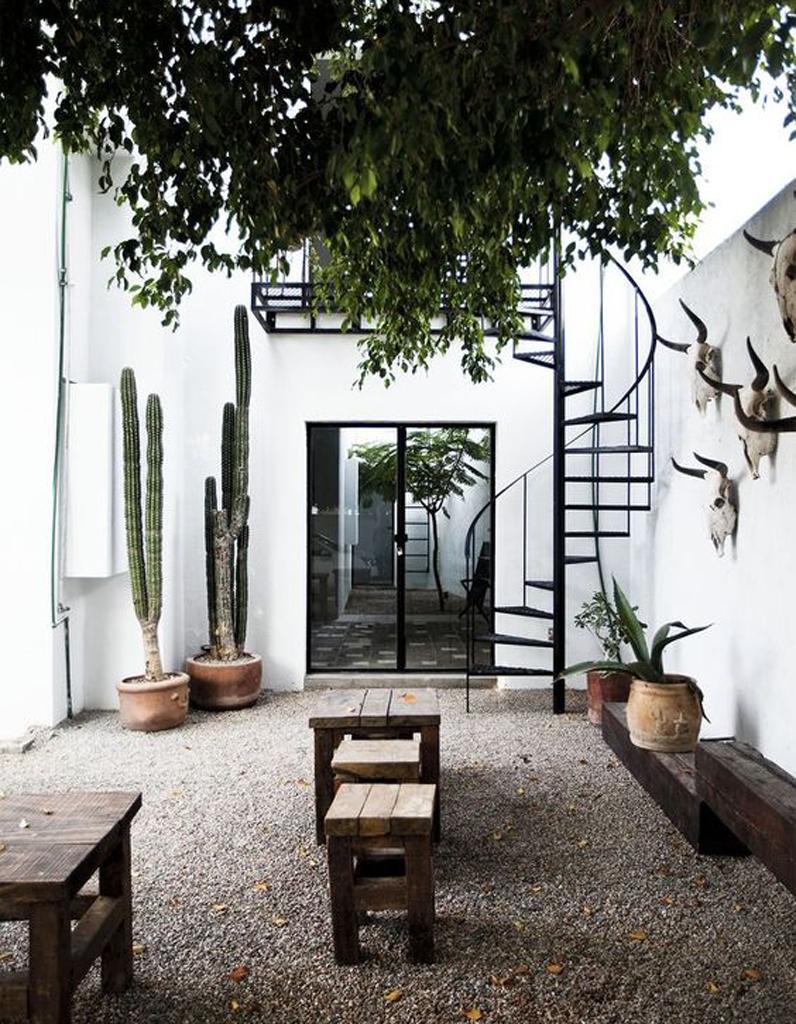 30 int rieurs pour vous convaincre d 39 adopter d finitivement le cactus elle d coration - Invasion d araignee dans le jardin ...