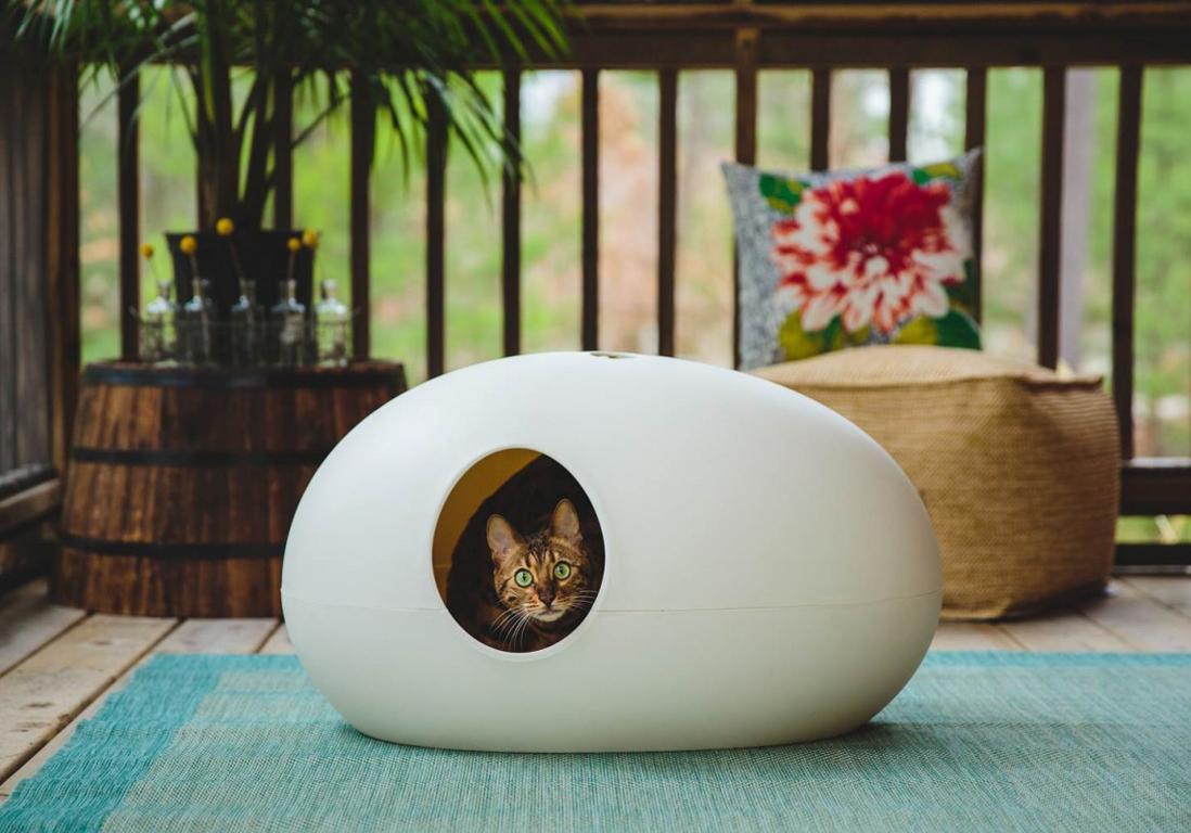 accessoires pour animaux design notre s lection tr s d co elle d coration. Black Bedroom Furniture Sets. Home Design Ideas