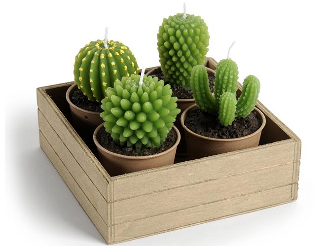 la d co cactus pique notre int r t elle d coration. Black Bedroom Furniture Sets. Home Design Ideas