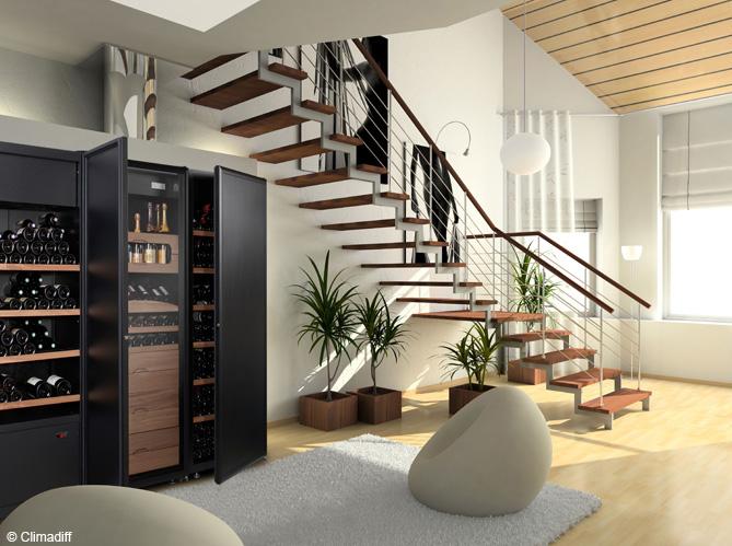 quelle cave vin choisir elle d coration. Black Bedroom Furniture Sets. Home Design Ideas