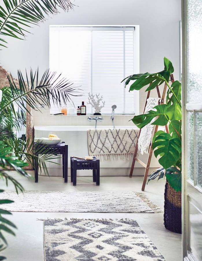 nos id es de plantes pour une salle de bain v g tale. Black Bedroom Furniture Sets. Home Design Ideas
