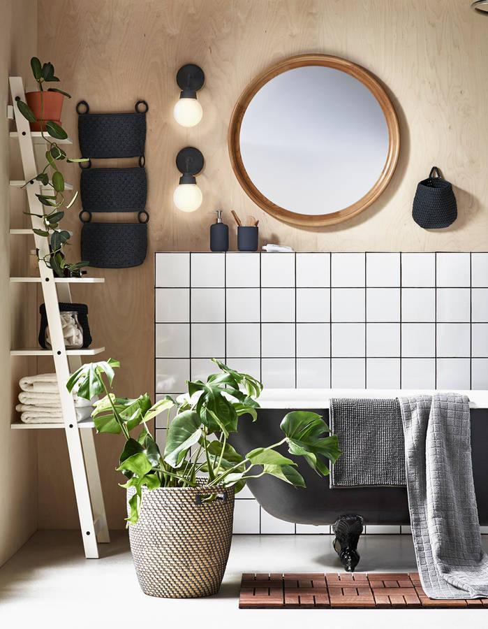 Plante Dans Panier : Nos id?es de plantes pour une salle bain v?g?tale