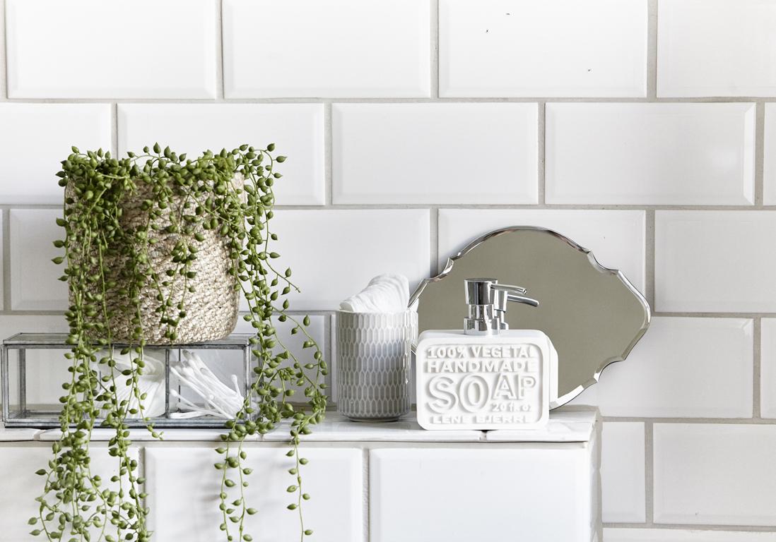 quelle plante pour salle de bain great quelles plantes pour ma salle de bains quelle plante. Black Bedroom Furniture Sets. Home Design Ideas