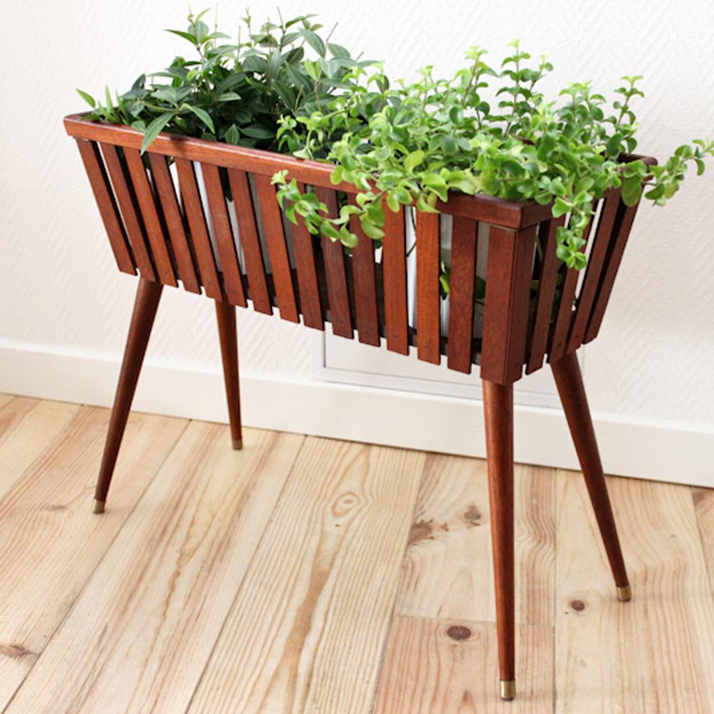 tendance les plantes prennent de la hauteur elle. Black Bedroom Furniture Sets. Home Design Ideas