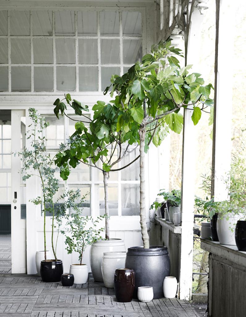 Decoration entree maison exterieur excellent decoration for Deco entree exterieure