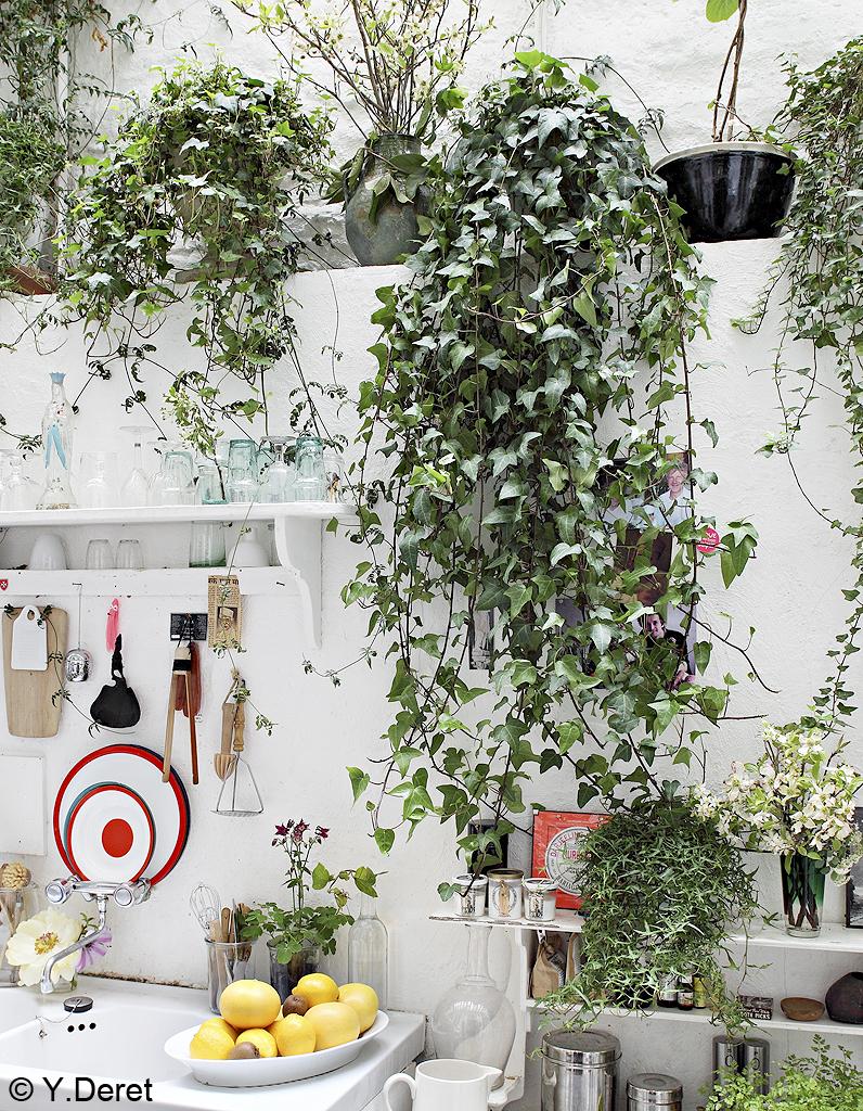 un jardin dans ma maison elle d coration. Black Bedroom Furniture Sets. Home Design Ideas