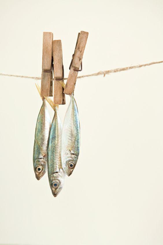 aliment pas cher sardines en boites comment manger sainement sans se ruiner elle table. Black Bedroom Furniture Sets. Home Design Ideas