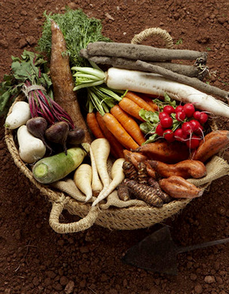 Pot e traditionnelle pour 6 personnes recettes elle table - Recette cuisine provencale traditionnelle ...