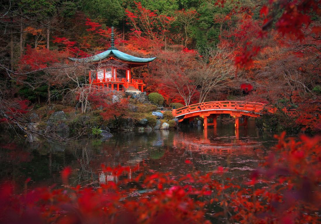 Kyoto japon les 25 plus belles villes du monde qui nous font r ver elle - Les plus belles jardins du monde ...