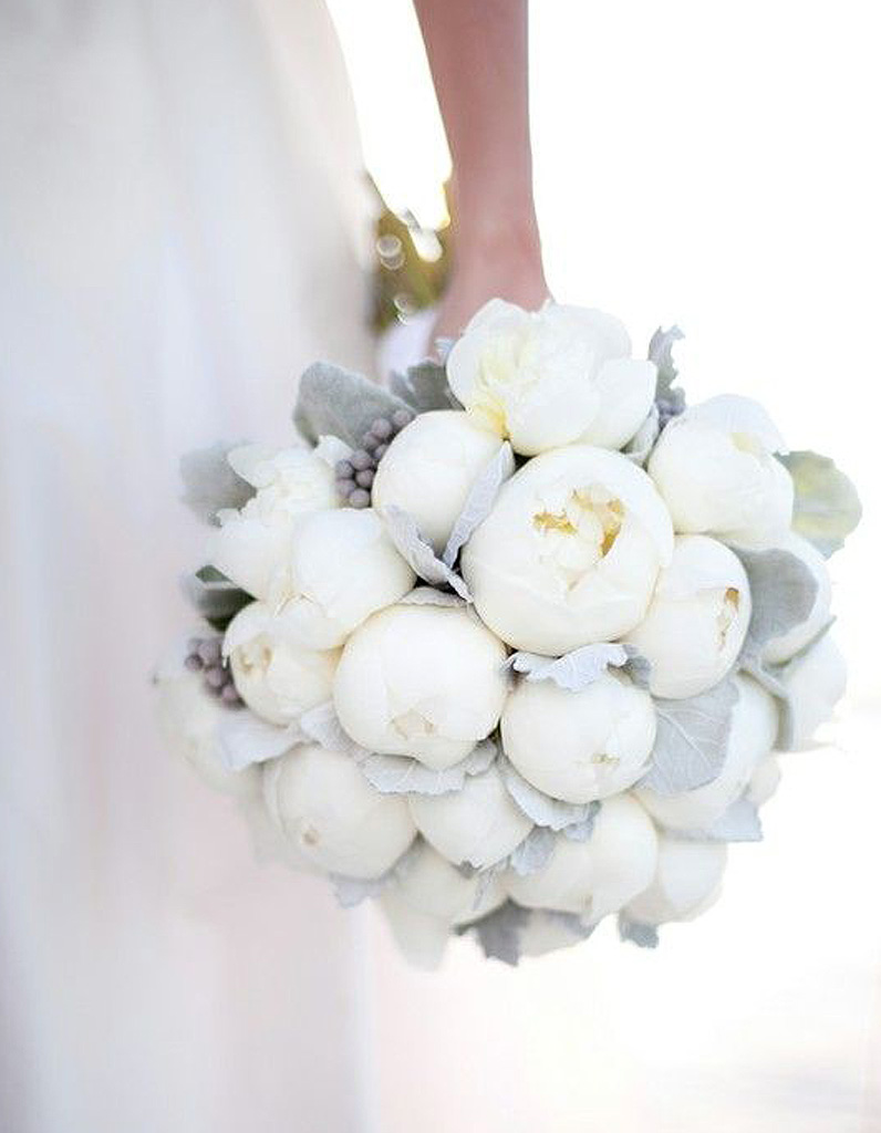 Exceptionnel Bouquet de fleurs blanches : les plus beaux bouquets de fleurs  WV67