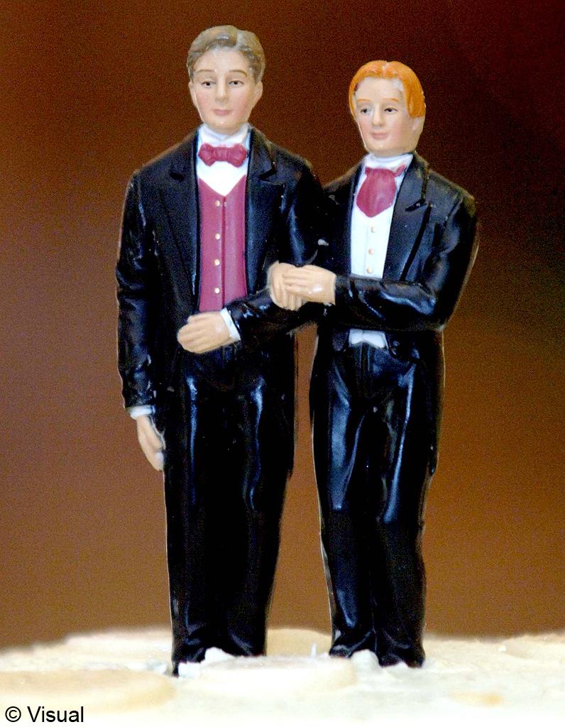 mariage homosexuel le projet de loi pr sent le 24 octobre elle. Black Bedroom Furniture Sets. Home Design Ideas